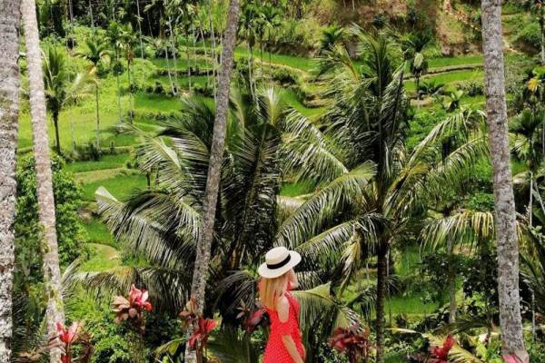 5 Recommendations for Trekking Tour in Ubud Bali, Time to Have a Visit!