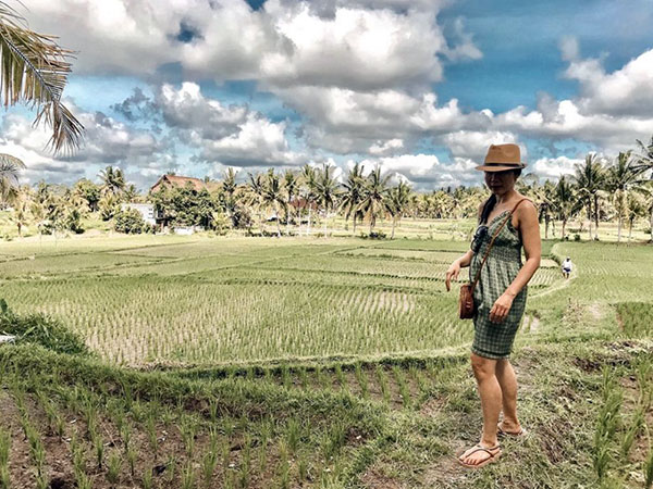 rice-fields